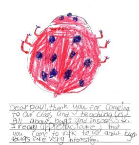 Kids like bugs.