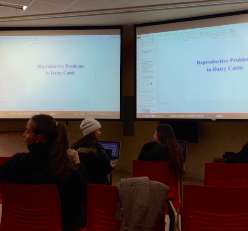 Rethinking the University Classroom: Ban the podium-style lecture, not the laptop