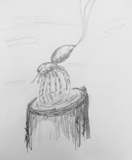 "A quick sketch of what it looks like when a spider ""takes off"" by ballooning."