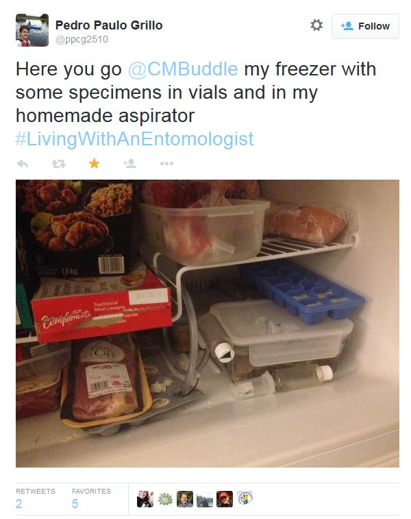 A typical freezer: note the food AND the vials with dead insects.