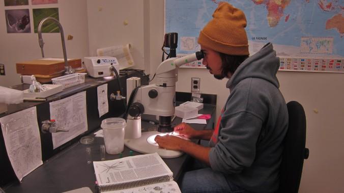 Kamil_Microscope