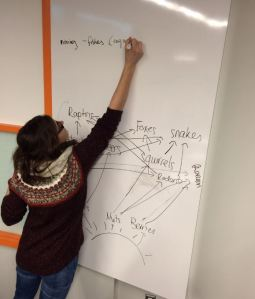 Students using the whiteboard to make food-webs.